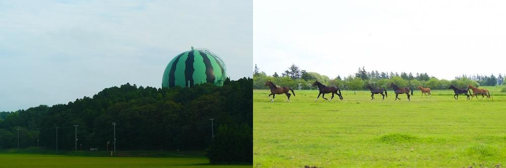 千葉県富里市 スイカが名産 馬のふるさと